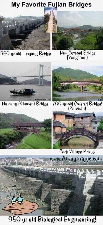 My favorite Fujian Province bridges--I especially love Fujian's wooden covered bridges, many of which are several stories high and house many families--as well as the bridge gods.